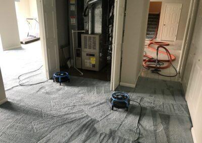 Deep Steam Carpet Cleaning Elgin