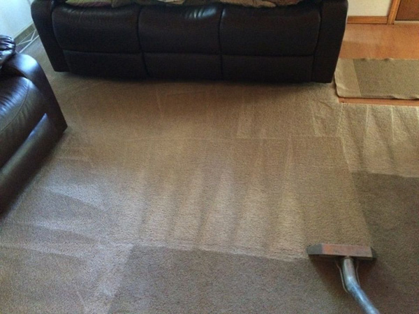 Carpet Cleaning Elgin