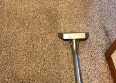 Emergency Carpet Cleaning Elgin