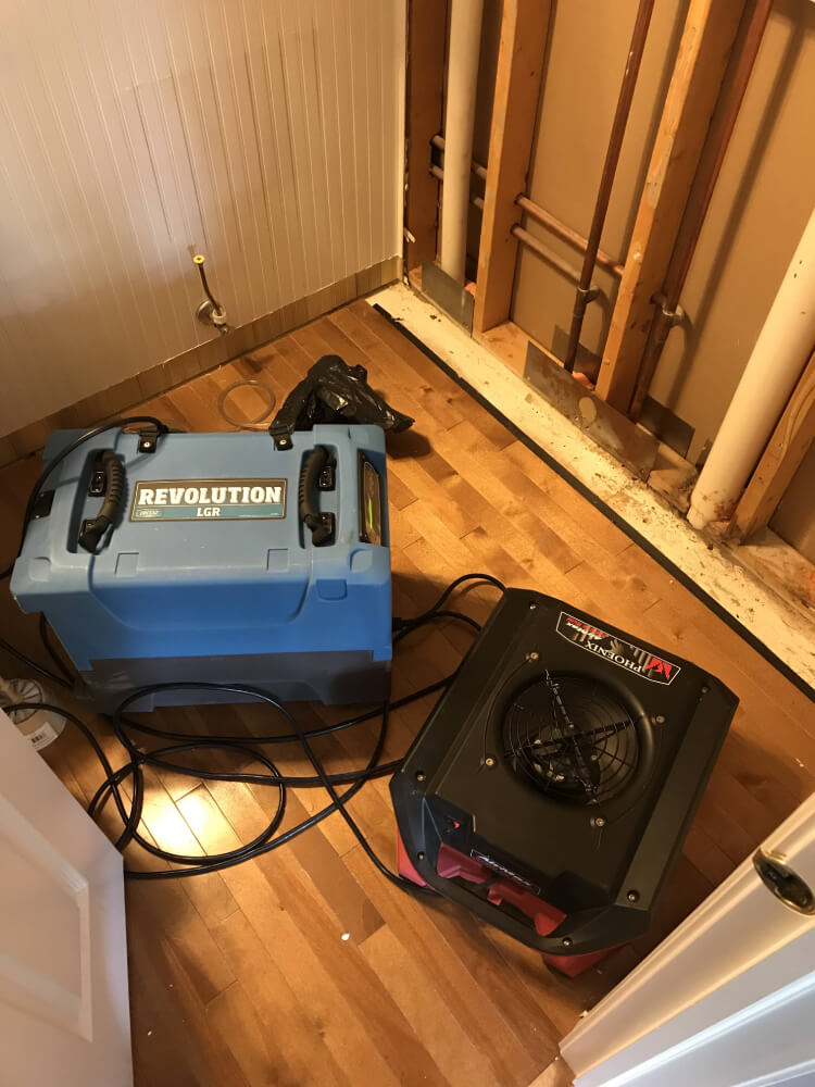 Mold Remediation Specialists Elgin