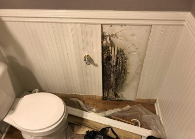 Mold Remediation Near Elgin Illinois