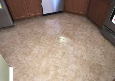 Tile, Grout & Hardfloor Care