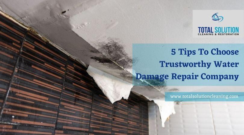 Water Damage Repair Company Elgin