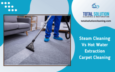 Steam Cleaning Vs Hot Water Extraction Carpet Cleaning