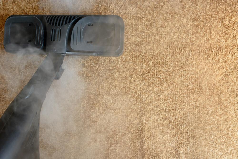 carpet steam cleaning Elgin