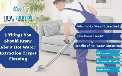 3 Things You Should Know About Hot Water Extraction Carpet Cleaning