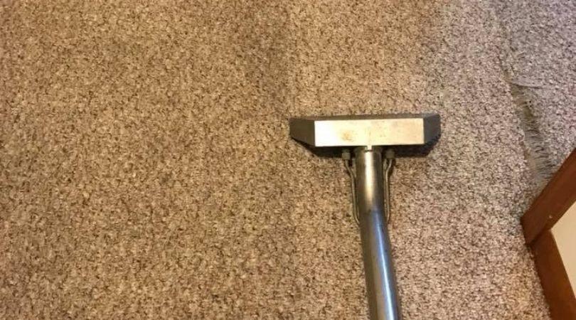 Carpet Deodorizing Service