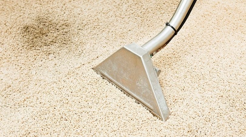 Carpet Stain Removal Services Elgin