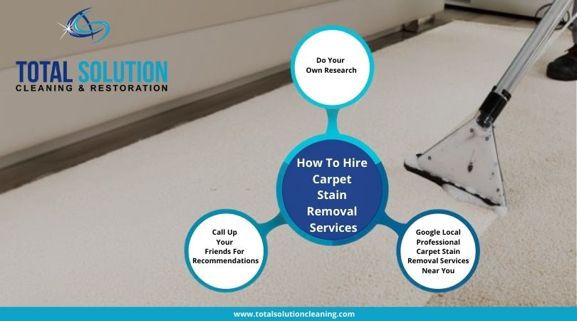 How To Hire Carpet Stain Removal Services?