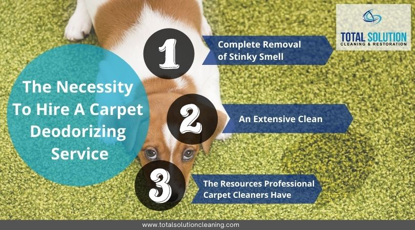 The Necessity To Hire A Carpet Deodorizing Service