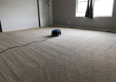 Turbo Drying Carpet Cleaning Service Elgin