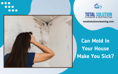 Can Mold In Your House Make You Sick?