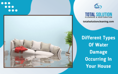 Different Types Of Water Damage Occurring In Your House