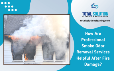 How Are Professional Smoke Odor Removal Services Helpful After Fire Damage?