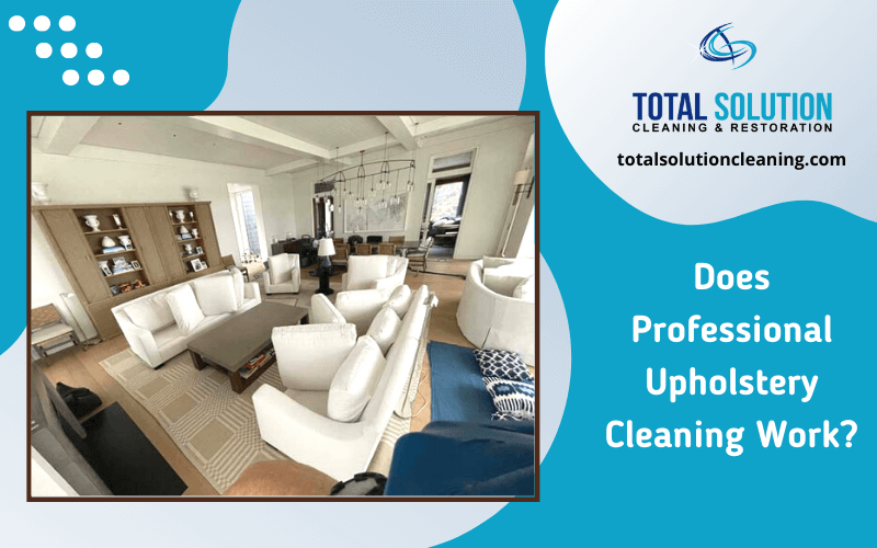 Does Professional Upholstery Cleaning Work